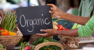 Feeding On Organic Food Items Intended For Well Being