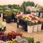 Wholesale Flowers All Year Round